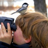 Thumbnail image for Birdwatching Bonanza: How To Add 800 Species To Your Life List In One Trip