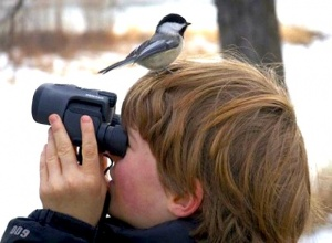 Post image for Birdwatching Bonanza: How To Add 800 Species To Your Life List In One Trip